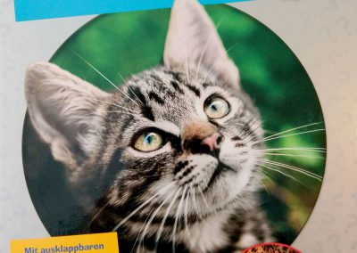 ProfiWissen Katzen Ravensburger Buchverlag 2016